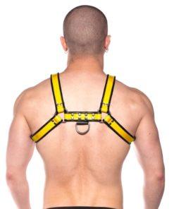 Prowler Red Bull Harness - XLarge - Black/Yellow